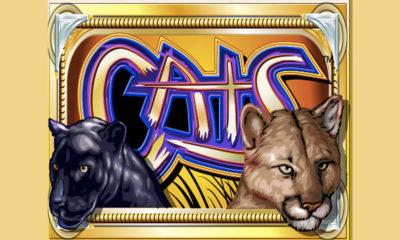 cats tragamonedas