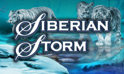 siberian storm tragamonedas