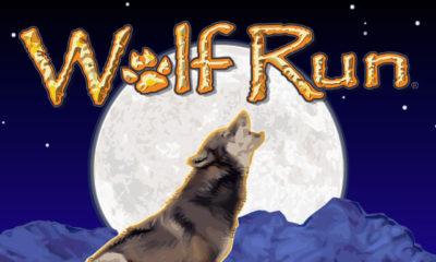 Jugar al tragamonedas Wolf Run