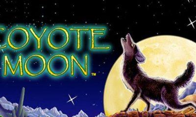 Jugar al tragamonedas Coyote Moon