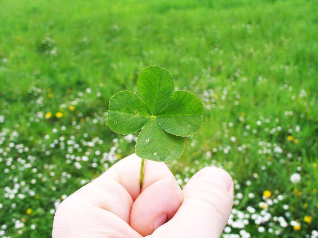 ¿Cómo atraer la buena suerte en los juegos de azar?